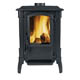 Solid Fuel Stove Devon
